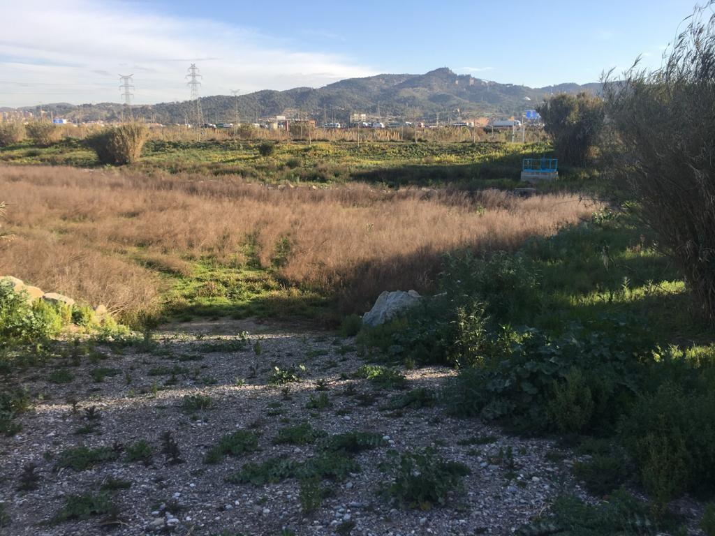 Dirección de obra balsas infiltración Sant Vicençs dels Horts 3 PROTECMED